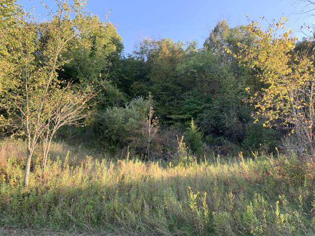 Lot 34 Hickory Dr, Greenbush, WI 53023 (#1662176) :: RE/MAX Service First Service First Pros