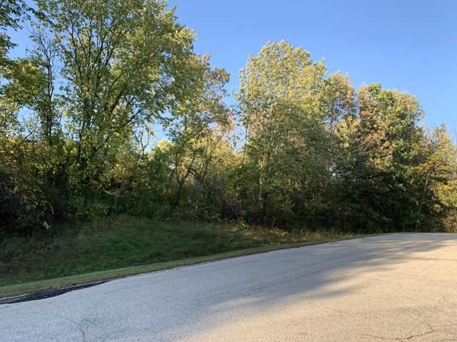 Lot 49 Thornapple Ct, Greenbush, WI 53023 (#1662179) :: Tom Didier Real Estate Team