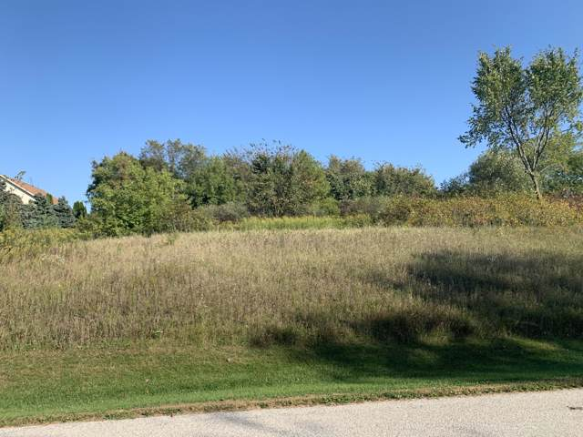 Lot 36 Ridge Creek Rd, Rhine, WI 53020 (#1662209) :: RE/MAX Service First Service First Pros