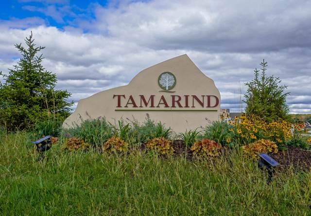 Lt5 Tamarind Ct, Menomonee Falls, WI 53051 (#1662491) :: Tom Didier Real Estate Team