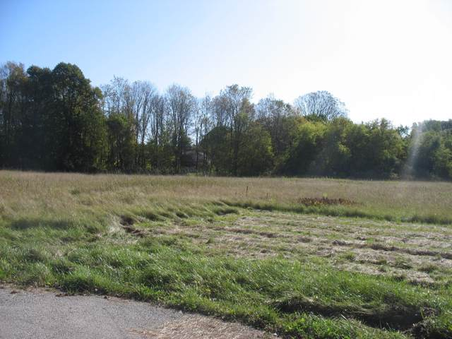 Lot 99 S 17th St, Manitowoc, WI 54220 (#1663237) :: eXp Realty LLC