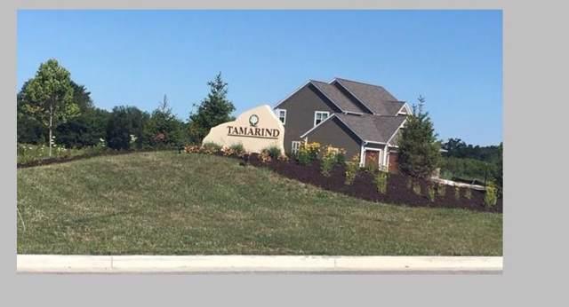 Lot 22 Tamarind Way, Menomonee Falls, WI 53051 (#1664199) :: Tom Didier Real Estate Team