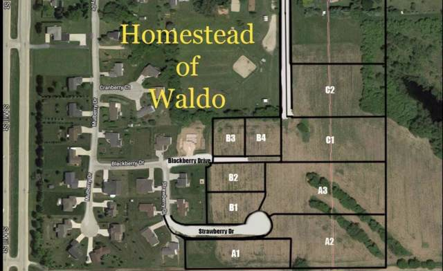 Lot A-1 Homestead Of Waldo, Waldo, WI 53093 (#1669204) :: OneTrust Real Estate