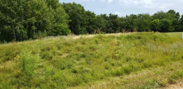 Lt8 Blue Heron Hills, Whitewater, WI 53190 (#1670380) :: Tom Didier Real Estate Team