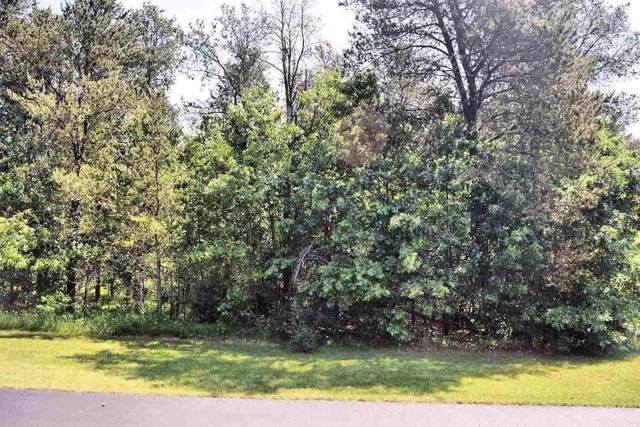 164 Northwoods Cir, Lake Delton, WI 53965 (#1672249) :: Tom Didier Real Estate Team