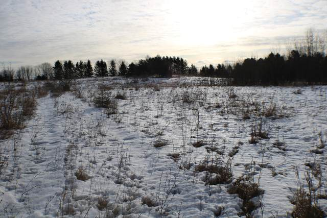 Lot 99 Lakeshore Rd, Kewaunee, WI 54216 (#1675741) :: RE/MAX Service First Service First Pros