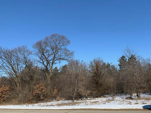 Lot 20 Idyllview Ave, Sparta, WI 54656 (#1675843) :: Tom Didier Real Estate Team