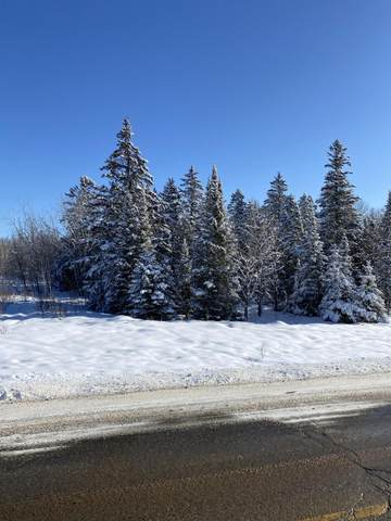 14.76 AC Cty Hwy W, Lake, WI 54159 (#1676565) :: RE/MAX Service First Service First Pros