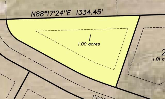 Lt1 Woodland Ponds Estates, Germantown, WI 53022 (#1676775) :: OneTrust Real Estate