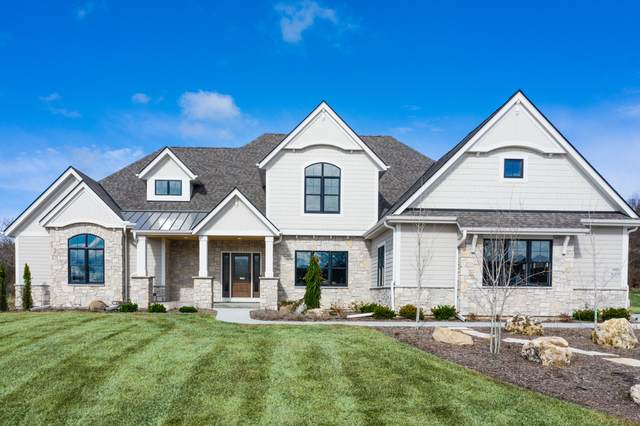 W336S1013 Riemer Ct, Delafield, WI 53018 (#1682722) :: RE/MAX Service First Service First Pros