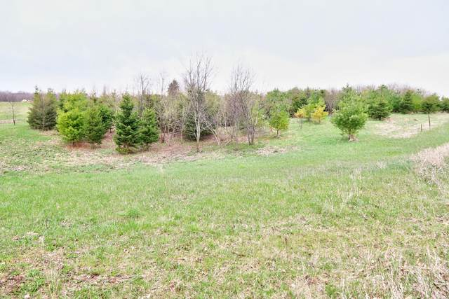 10 Acres County Road N, Mitchell, WI 53073 (#1687304) :: RE/MAX Service First Service First Pros