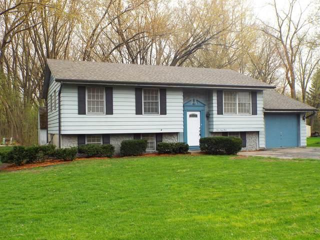 163 Ludwig Ave, Dousman, WI 53118 (#1687572) :: Keller Williams Realty - Milwaukee Southwest