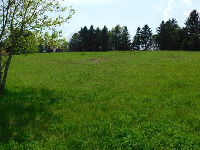 Lot 17 Stoney Brook Dr, Manitowoc, WI 54220 (#1690808) :: Tom Didier Real Estate Team
