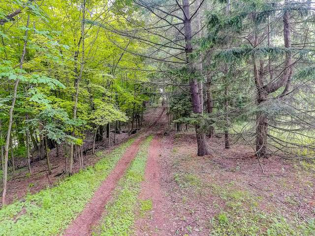 5750 Monches Rd, Erin, WI 53017 (#1692449) :: Tom Didier Real Estate Team