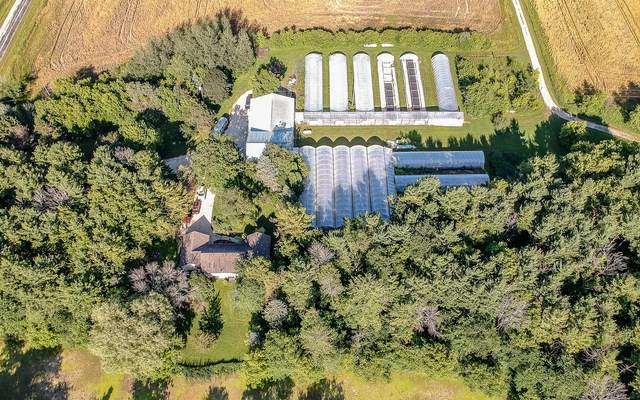 W4385 Belgium Kohler Rd, Fredonia, WI 53021 (#1695511) :: OneTrust Real Estate