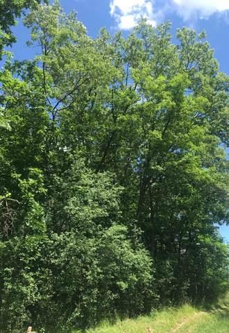 Lt31 Lakeview Park Dr, Linn, WI 53147 (#1695758) :: NextHome Prime Real Estate