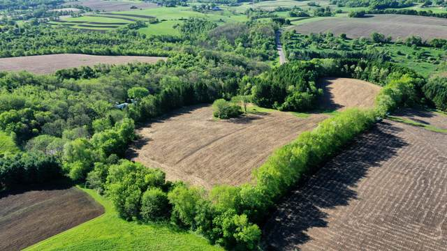 S5437 County Road Nn, Viroqua, WI 54665 (#1696232) :: RE/MAX Service First Service First Pros