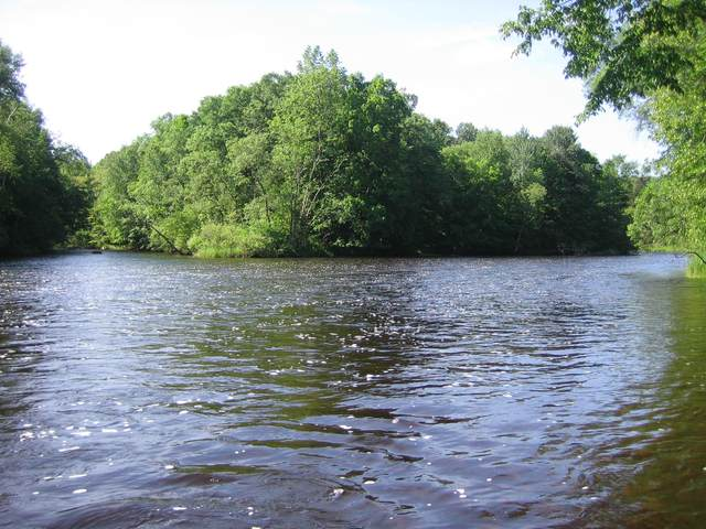 4.99 Acres Hydro Rd, Stephenson, WI 54114 (#1696518) :: RE/MAX Service First Service First Pros