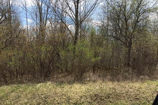 2231 W Puetz Rd, Oak Creek, WI 53154 (#1696766) :: Keller Williams Realty - Milwaukee Southwest