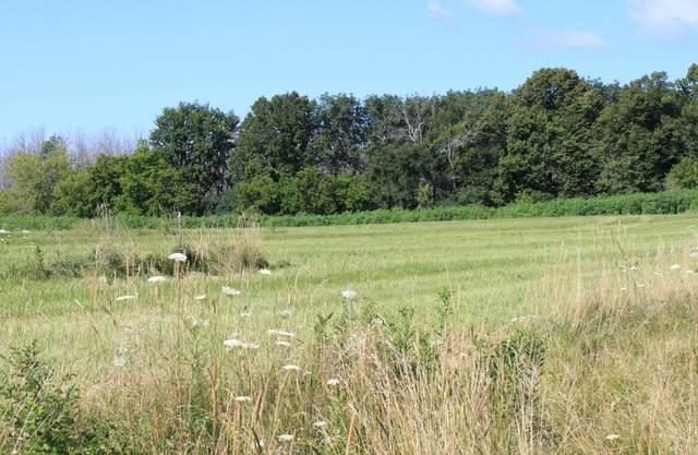 Lt2 Meadow View Estates, Cedarburg, WI 53012 (#1703143) :: Tom Didier Real Estate Team