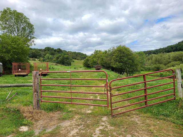 XX County Highway T, Ridgeville, WI 54648 (#1703357) :: OneTrust Real Estate