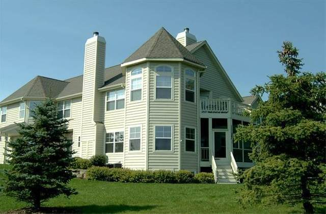 1018 Terrace Ct 43-05M, Geneva, WI 53147 (#1703848) :: OneTrust Real Estate