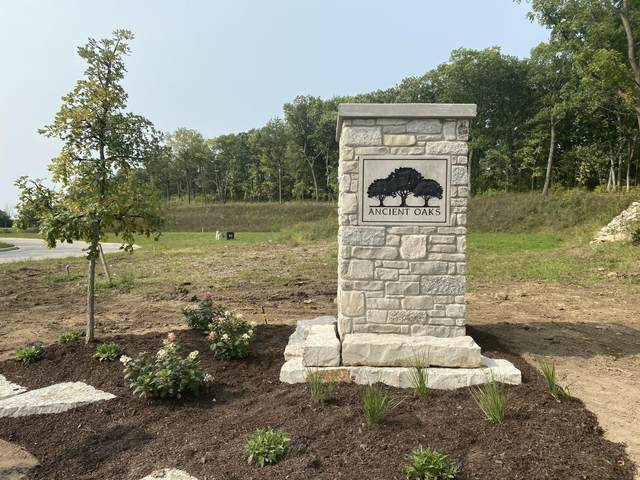 Lot #38 Ancient Oaks Subdivision, Sussex, WI 53089 (#1710481) :: OneTrust Real Estate