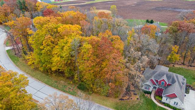 LOT 20 Oriole Ln, Howards Grove, WI 53083 (#1717560) :: RE/MAX Service First