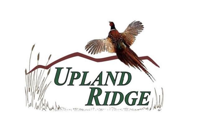 Lt1 Upland Ridge Ct, New Berlin, WI 53151 (#1717566) :: Keller Williams Realty - Milwaukee Southwest