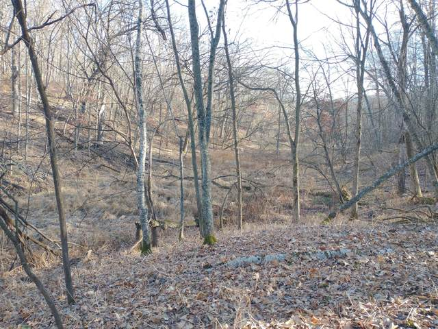150+/- AC County Highway M, Wilton, WI 54670 (#1720533) :: OneTrust Real Estate