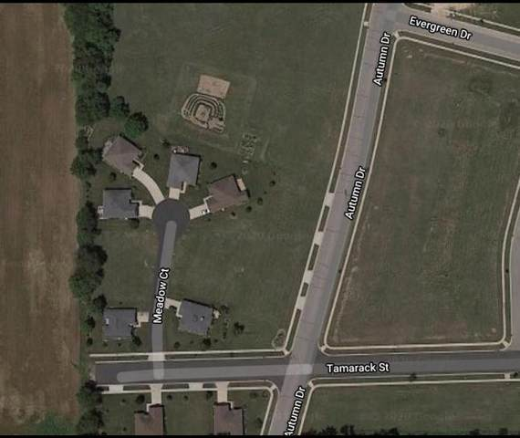 Lt13 Meadow Ct, Delavan, WI 53115 (#1721789) :: RE/MAX Service First