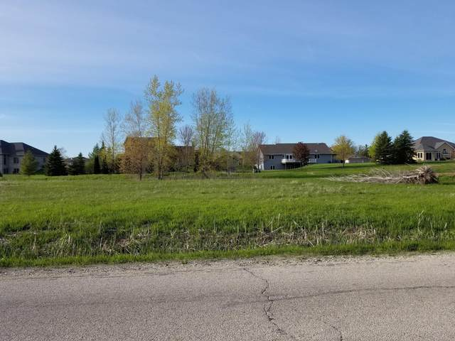 Lot 5 Stahl Rd, Wilson, WI 53081 (#1722155) :: Tom Didier Real Estate Team