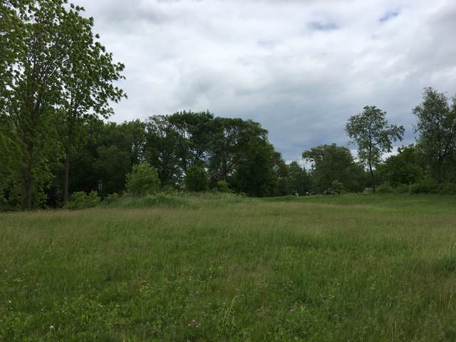 1990 Carriage Hills Dr, Delafield, WI 53018 (#1722347) :: RE/MAX Service First