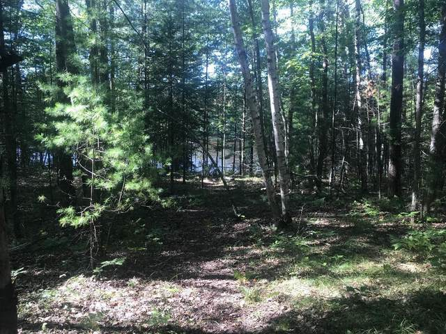 Lot 8 Menominee Shores Dr, Wagner, WI 54177 (#1725083) :: Tom Didier Real Estate Team