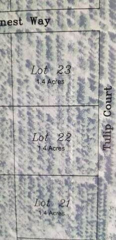 Lt22 Tulip Ct, Polk, WI 53086 (#1727239) :: EXIT Realty XL