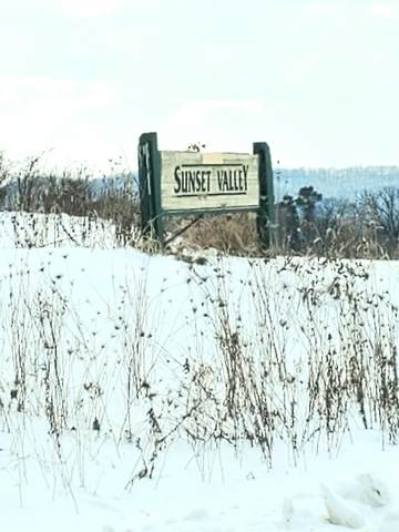 LOT 11 Sunset Valley Rd, Gale, WI 54630 (#1727934) :: OneTrust Real Estate