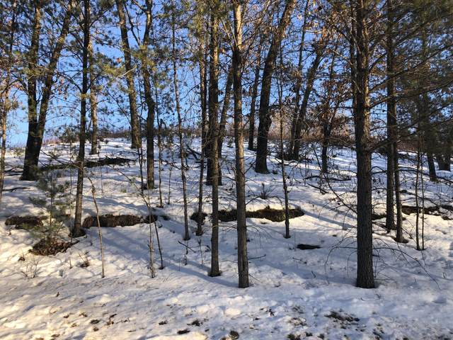 Lot 12 Jargon Ave, Wells, WI 54656 (#1728467) :: OneTrust Real Estate