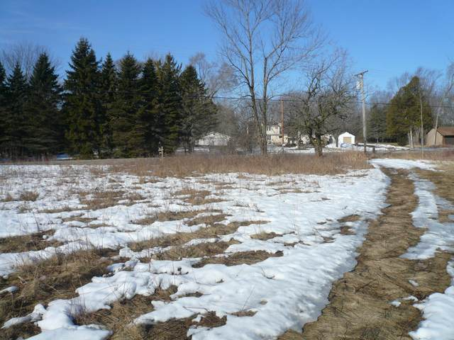 17.7 acres Cty Rd Ls, Sheboygan, WI 53083 (#1729634) :: OneTrust Real Estate