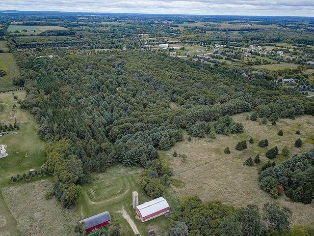 Lot 3 Killarney Rd, Erin, WI 53027 (#1735545) :: Tom Didier Real Estate Team