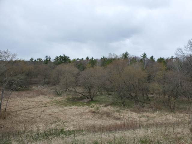 Lot 1 Hwy 147, Gibson, WI 54227 (#1736155) :: OneTrust Real Estate