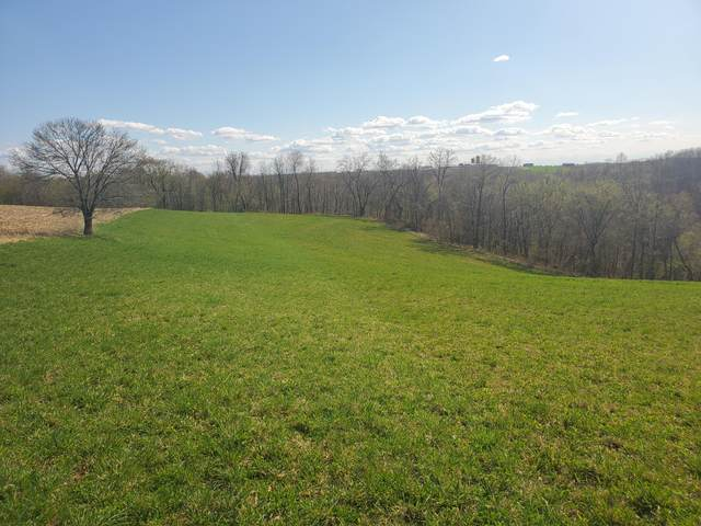 0 County Rd Jj, Arcadia, WI 54612 (#1736304) :: OneTrust Real Estate