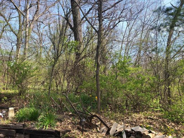 Lot 30 244th Ave, Salem, WI 53168 (#1739544) :: RE/MAX Service First