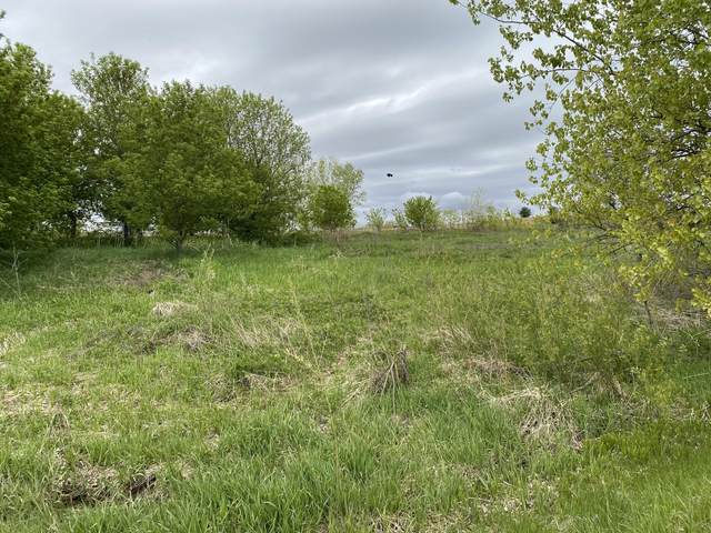 Lot 28 Weber View Dr, Hubbard, WI 53035 (#1739619) :: RE/MAX Service First