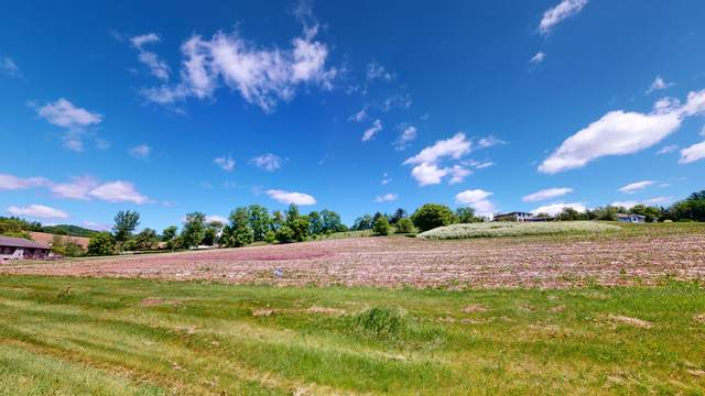 21560 Wolfe Run Ln, Galesville, WI 54630 (#1742821) :: OneTrust Real Estate