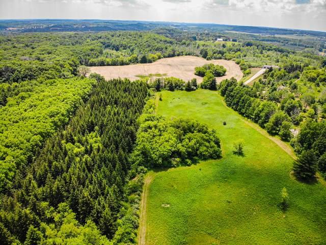 Lt1 Hi Mount Rd, Barton, WI 53040 (#1745525) :: Tom Didier Real Estate Team