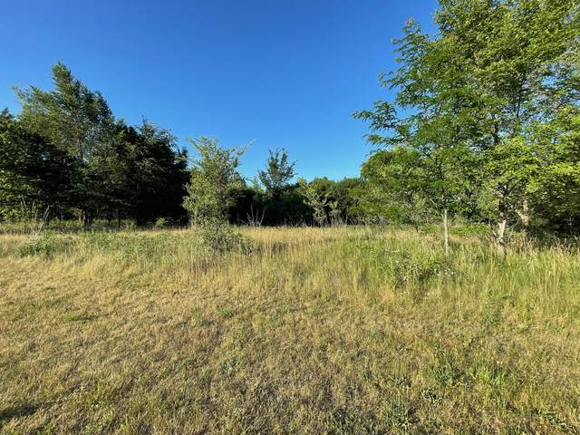 121 Vista Del Parco Dr Lt16, Sullivan, WI 53178 (#1746595) :: EXIT Realty XL