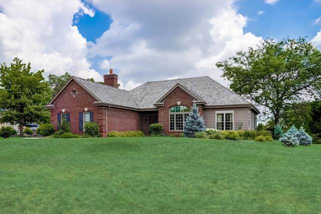 8464 S River Terrace Dr, Franklin, WI 53132 (#1751068) :: Keller Williams Realty - Milwaukee Southwest
