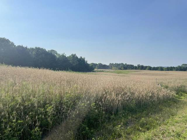 Lot 19 Hidden Prairie Dr, Holland, WI 54636 (#1754385) :: EXIT Realty XL