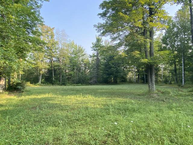 N11268 County Road Rr, Wagner, WI 54177 (#1754815) :: Re/Max Leading Edge, The Fabiano Group