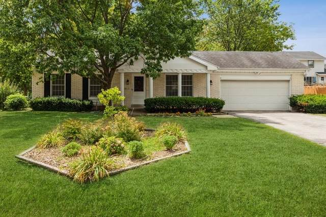 13665 W Crawford Dr, New Berlin, WI 53151 (#1755862) :: EXIT Realty XL